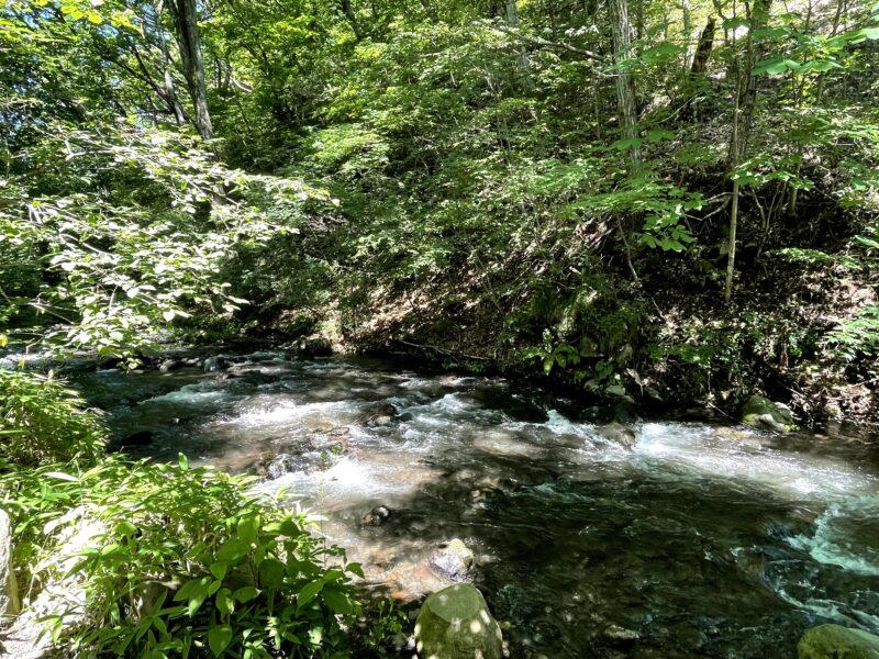 軽井沢星野エリアの夏の湯川