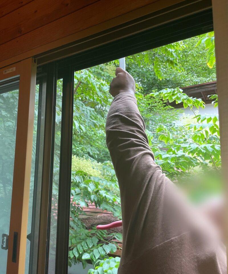 キツツキの穴は窓から補修できる