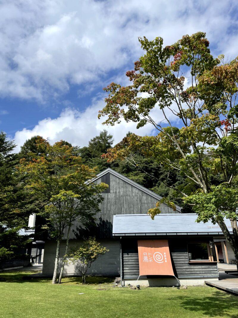 星野温泉トンボの湯前の木の葉は秋色